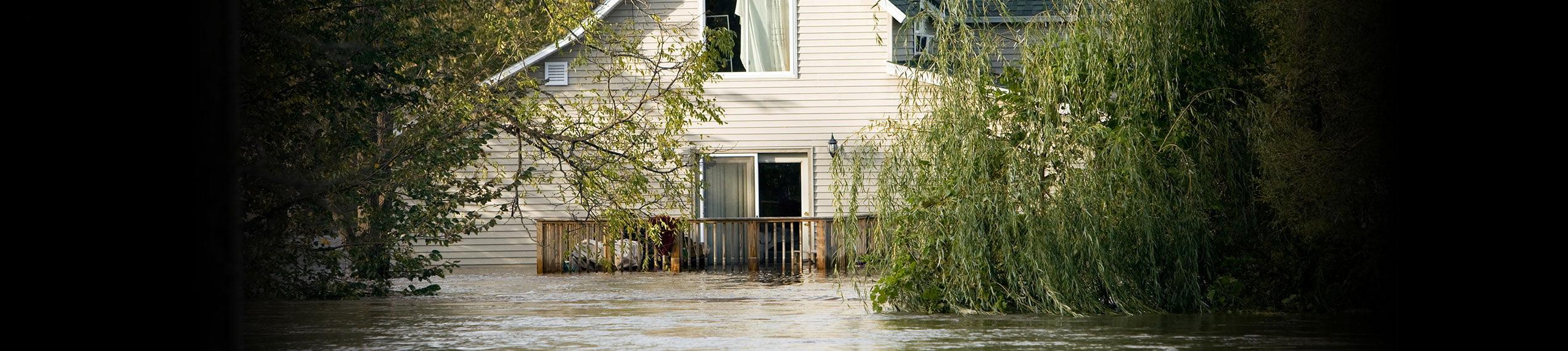Water & Flood Damage Removal Services in Paul Davis Emergency Services of West Huntsville AL